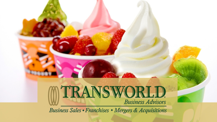Profitable Franchise Yogurt Store
