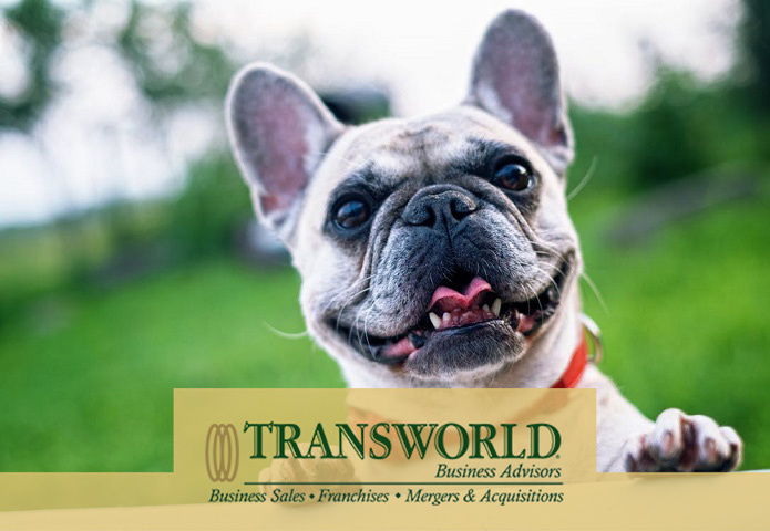 Profitable & Award-Winning Professional Dog Walking/Pet Sitting