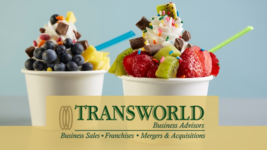 REDUCED! Profitable Frozen Yogurt Franch.-LaPorte Area