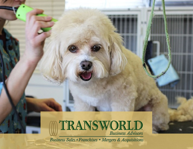Two Location Pet Grooming