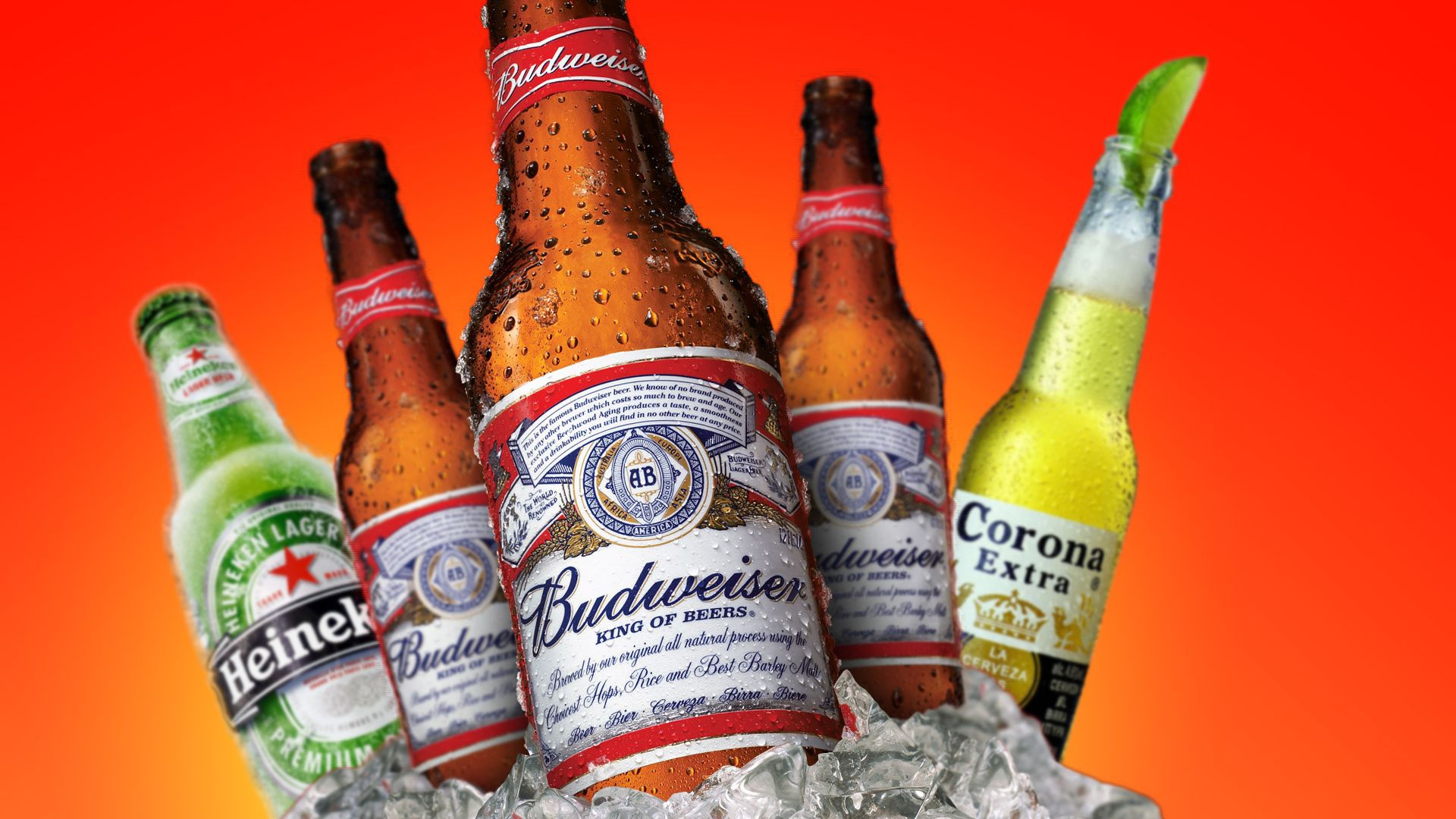 JUST REDUCED! Delco Beer Distributor with Strong Craft Beer Sales