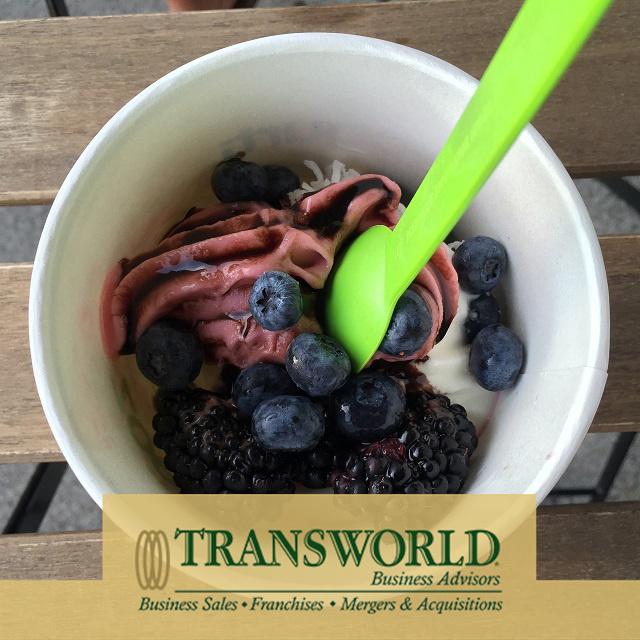 Self Serve Frozen Yogurt Est 10 years