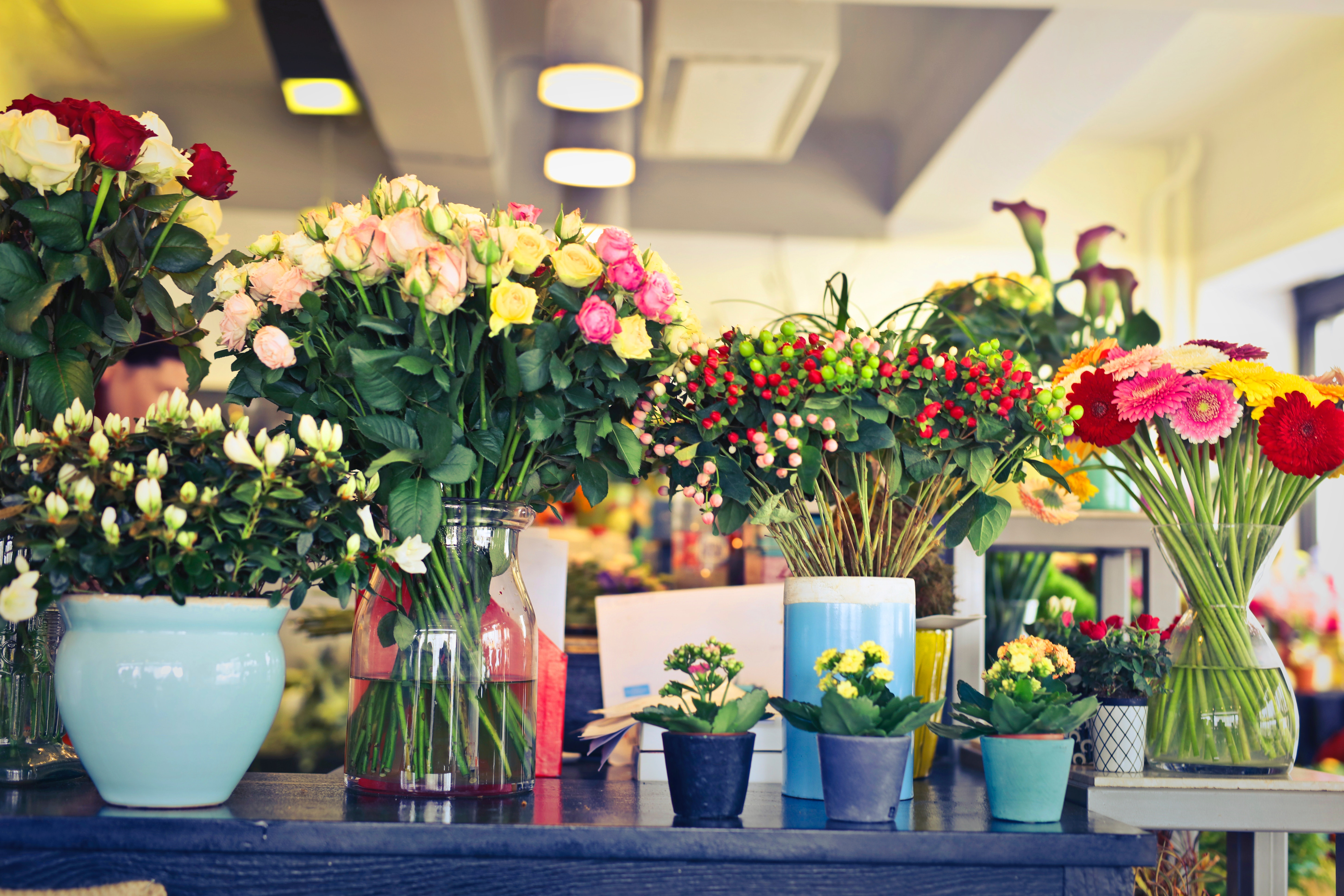 Absentee Wake County Florist Priced For Quick Sale