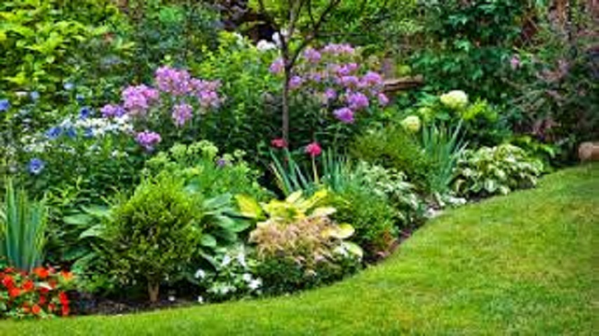 PROFITABLE RESIDENTIAL LANDSCAPE BUSINESS LOCATED IN GROWING AREA