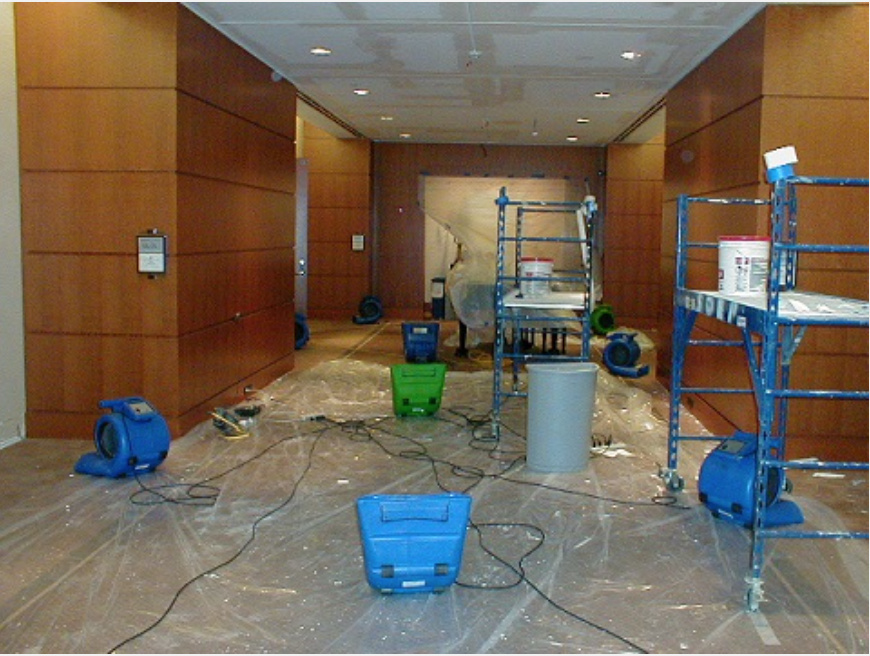 Full Service Cleaner: High-End Residential and Light Commercial