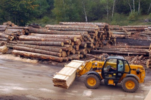 Established Saw Mill and Lumber Company