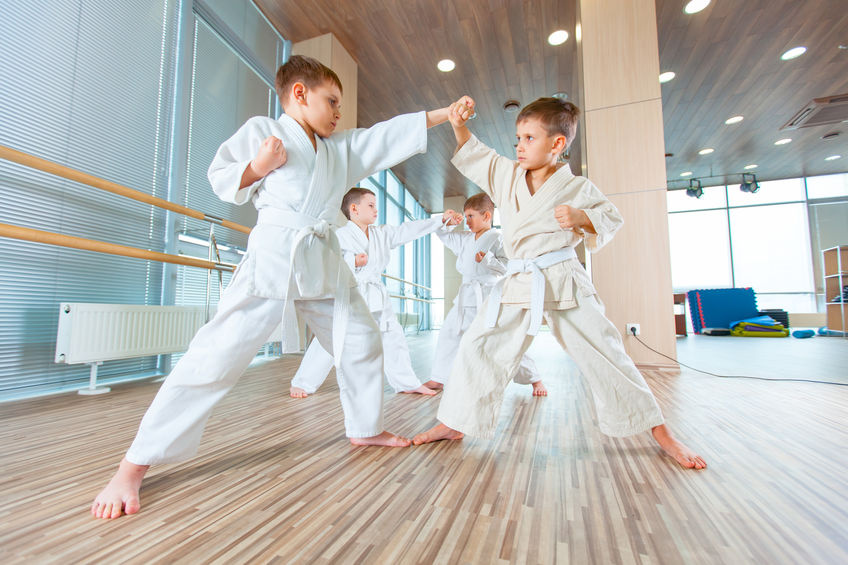 Successful Taekwondo (Korean Martial Arts) School