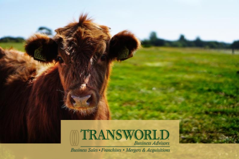 Agricultural Manufacturer and Animal Health Product Business