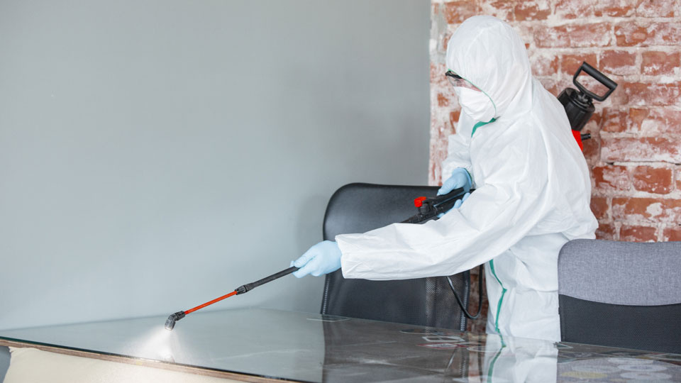 Covid Essential Cleaning Company in SE MA