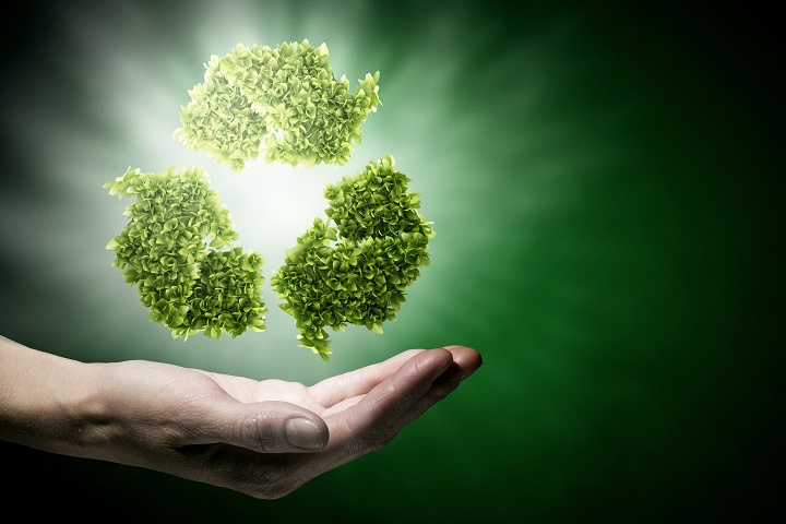Award Winning Go Green Sustainability Advisor Franchise