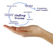 Profitable Staffing Company For Sale