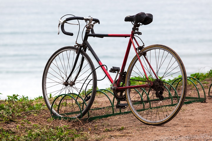 Bicycle Sales and Repair with Excellent Reputation