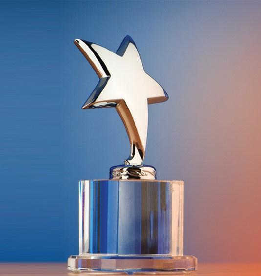 Established Manufacturer of Awards