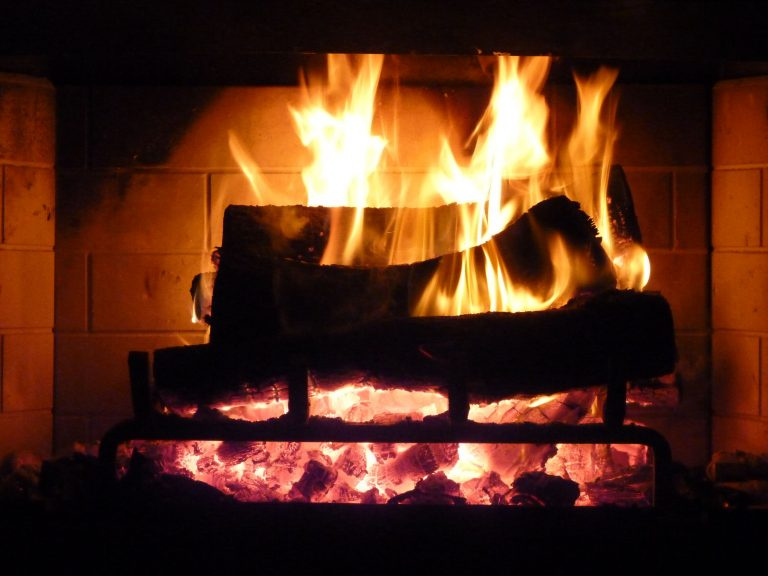 Profitable Firewood Distribution Business For Sale!
