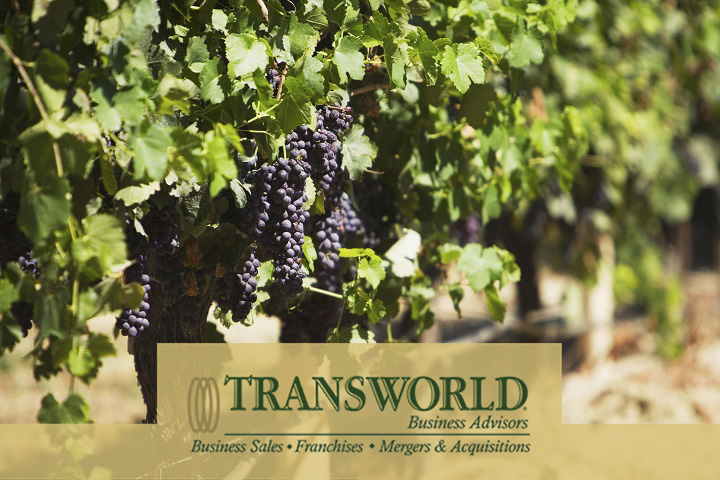 Wine Label and Brand with HUGE Growth Potential For Sale