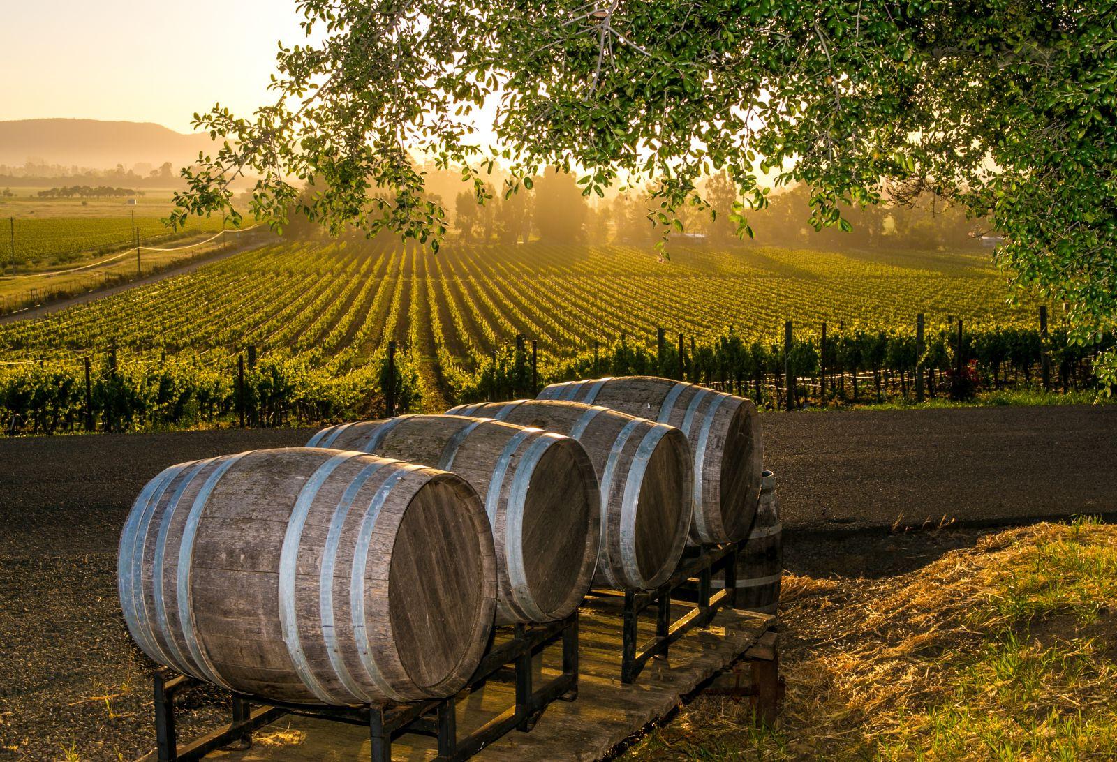 Profitable, Beautiful Winery
