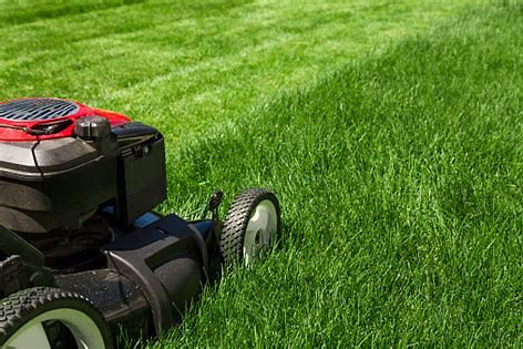 Lawn Equipment Sales, Repair and Rental Business With Real Estate