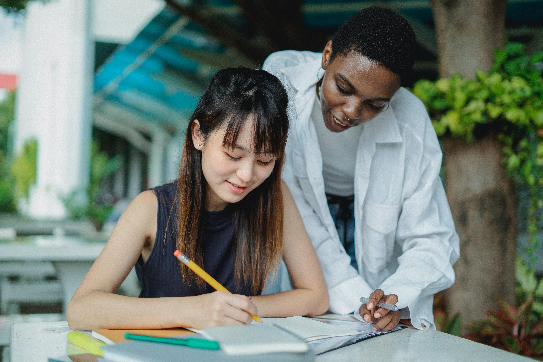 After-School Developmental Education Franchise UT County