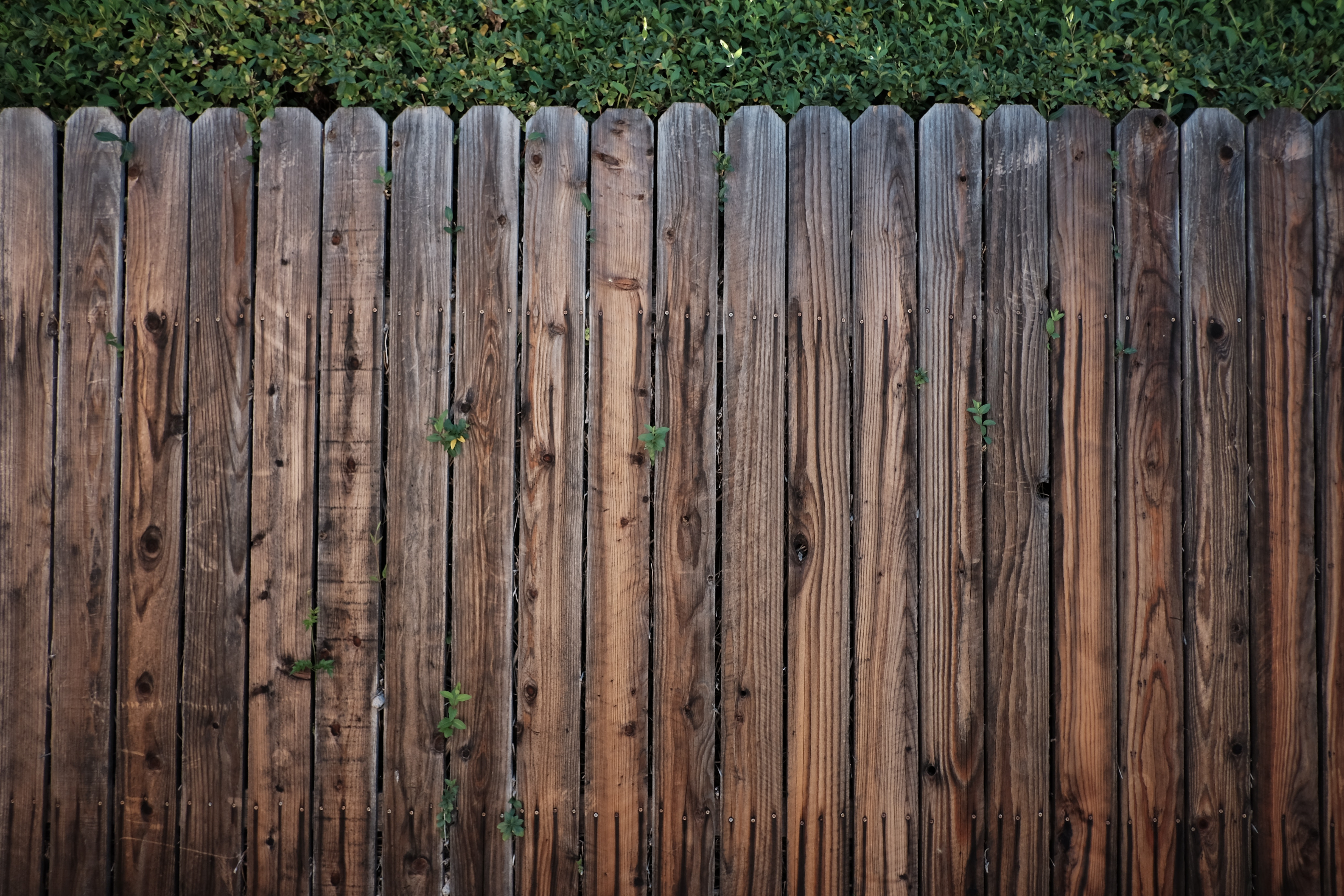 Relocatable & Priced To Sell Established Fence Staining Business