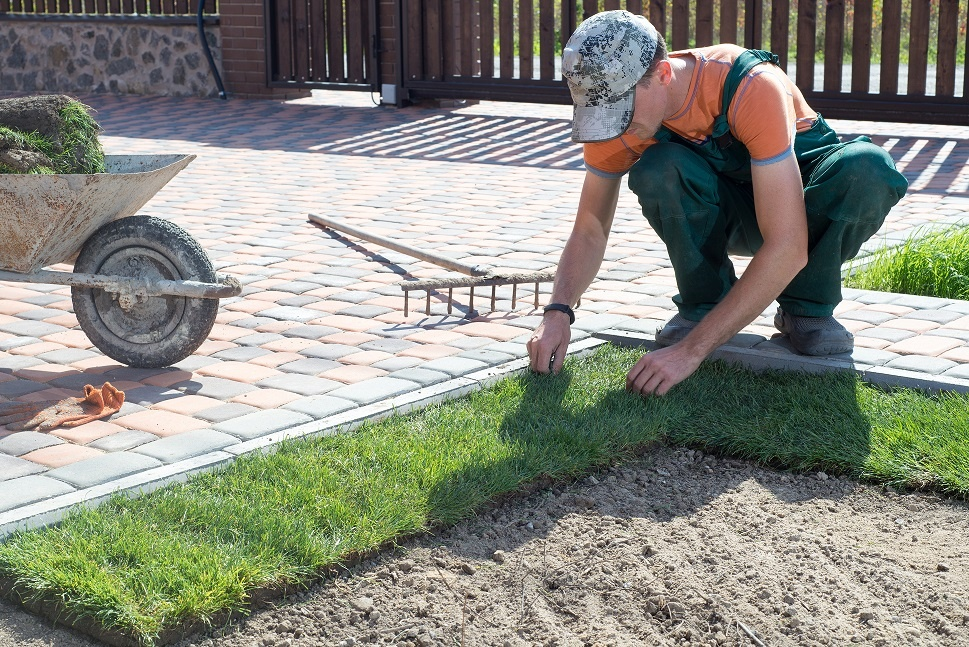 Rapidly growing Landscaping and Lawn Maintenance Business