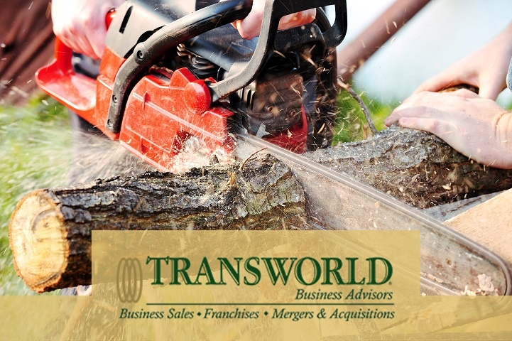 Tree Removal and Trimming- with Financing!