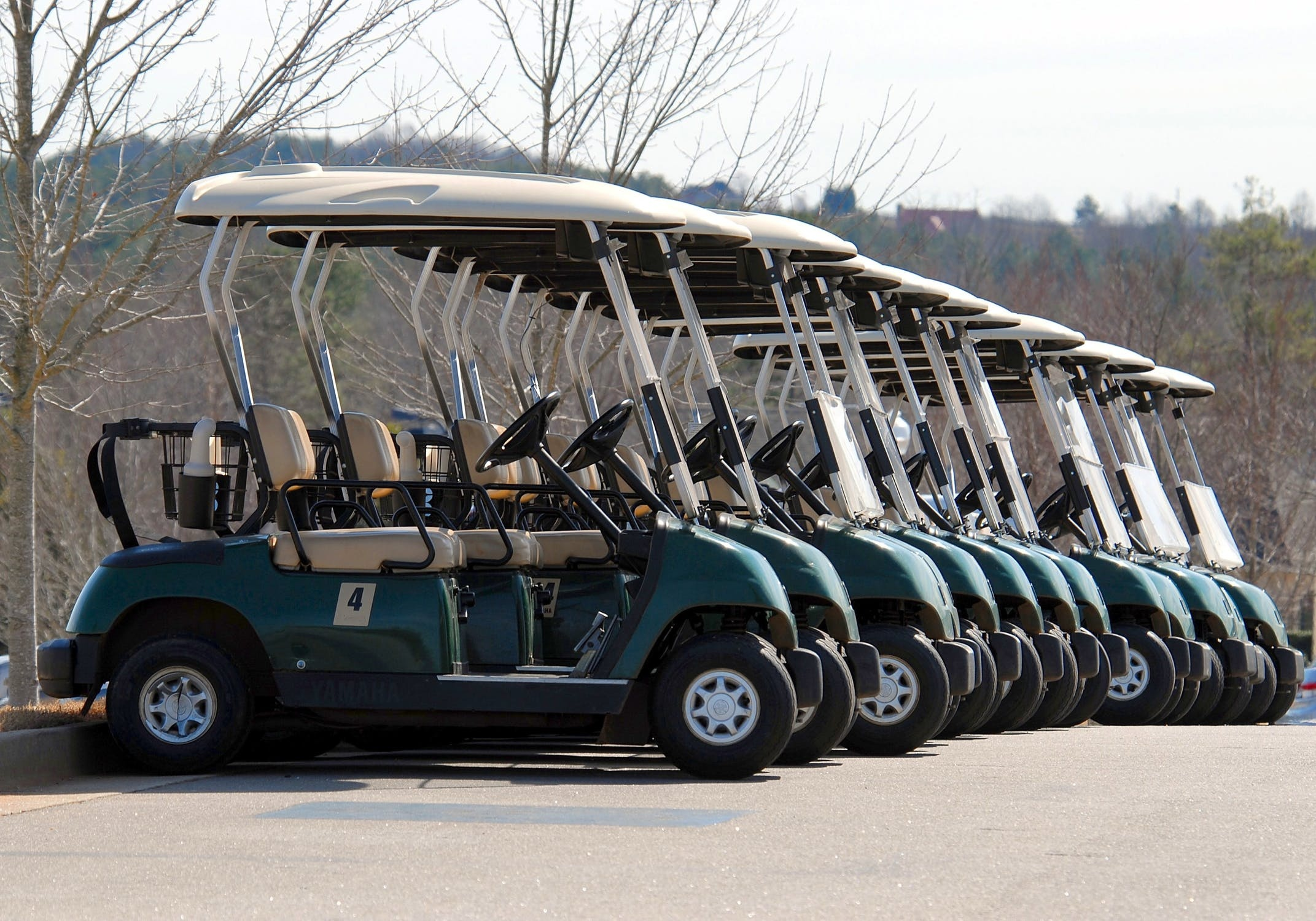 Profitable Golf Cart Business in Resort Area