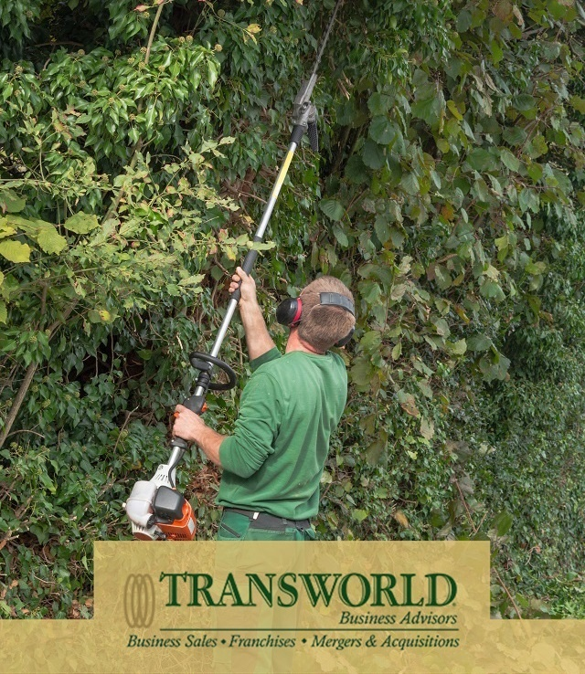 Tree Trimming Business in South East Florida est 23 Years