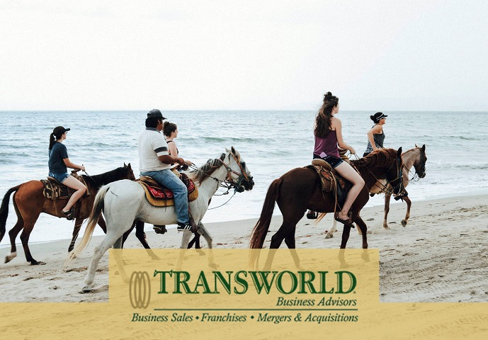 Beach Walking Horse Tours!!