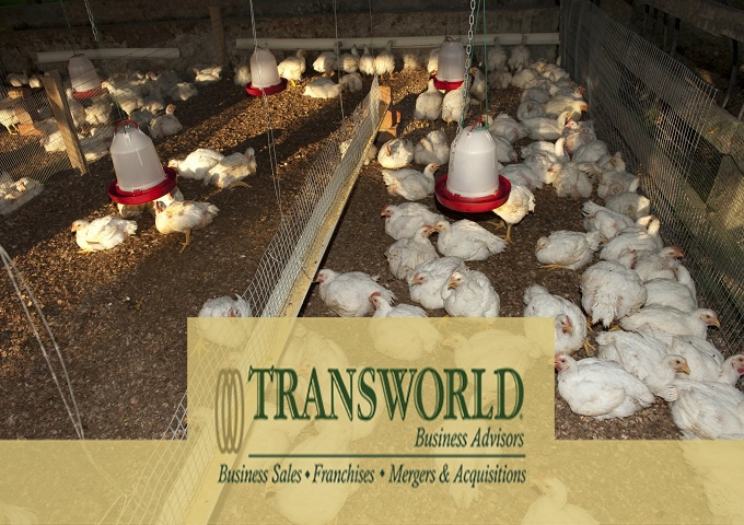 Distirubor & Manufacturer of Poultry Farm Houses