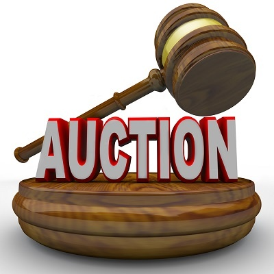 Profitable NW Appraisal & Auction Business with Incredible Terms