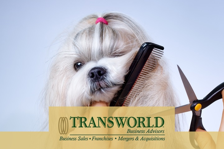 Established pet grooming business with room for growth