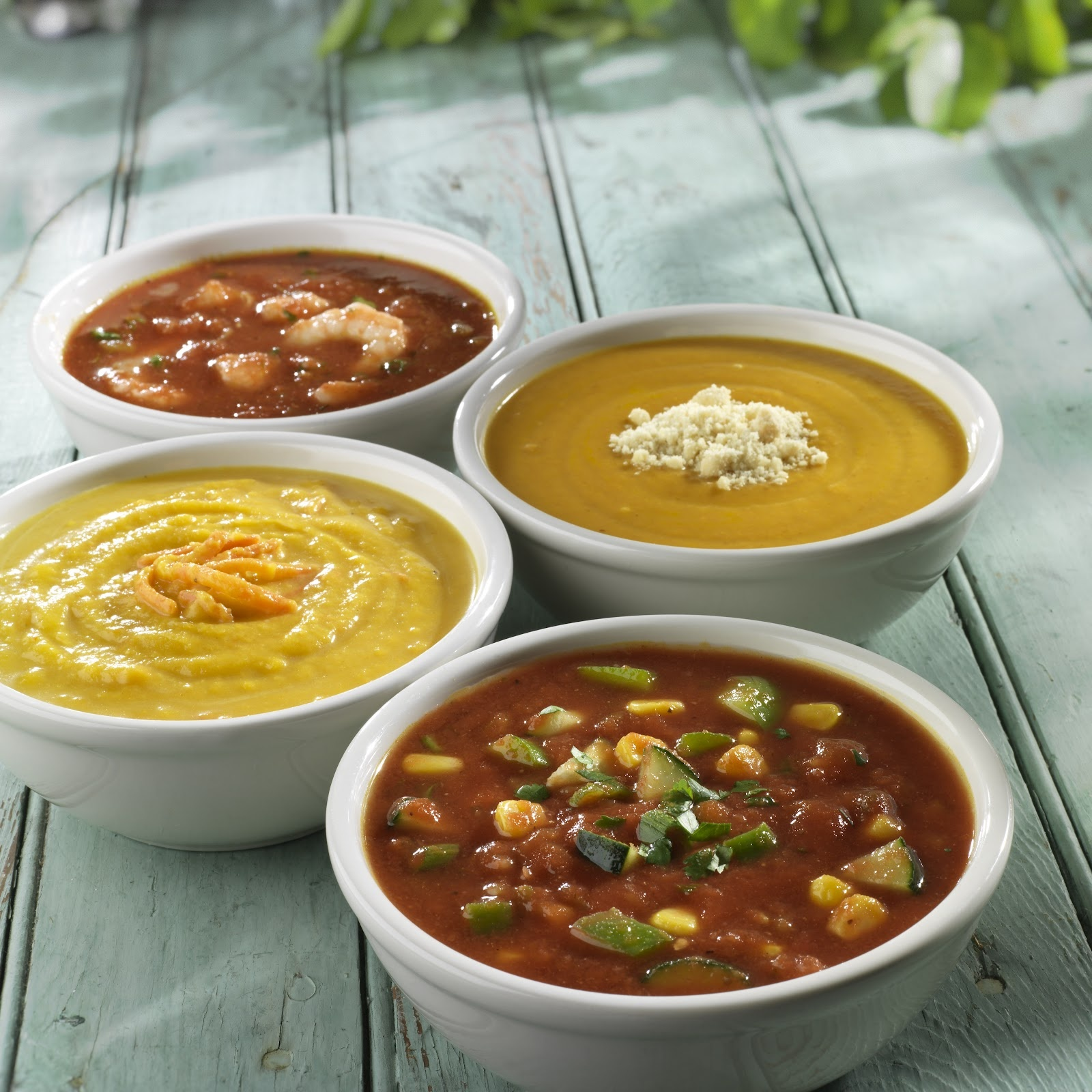 Profitable Turnkey Fast Casual Soup Concept with 2 Locations