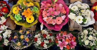 Profitable Florist in North Dallas