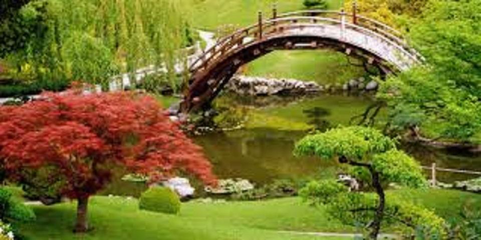 Retail Landscaping & Garden Center-Great Profits!