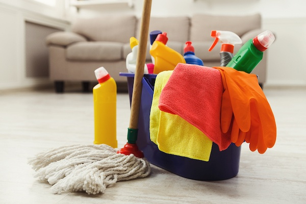 Established Top-Rated Home Cleaning Franchise