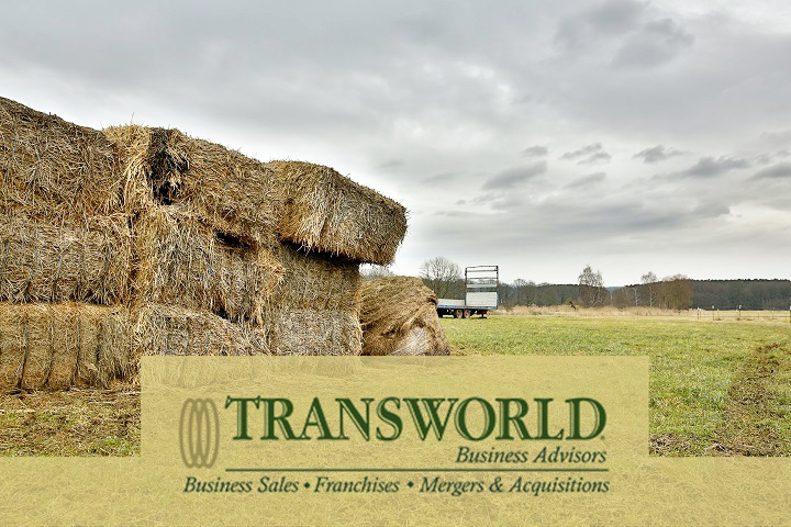 Hay & Feed Business
