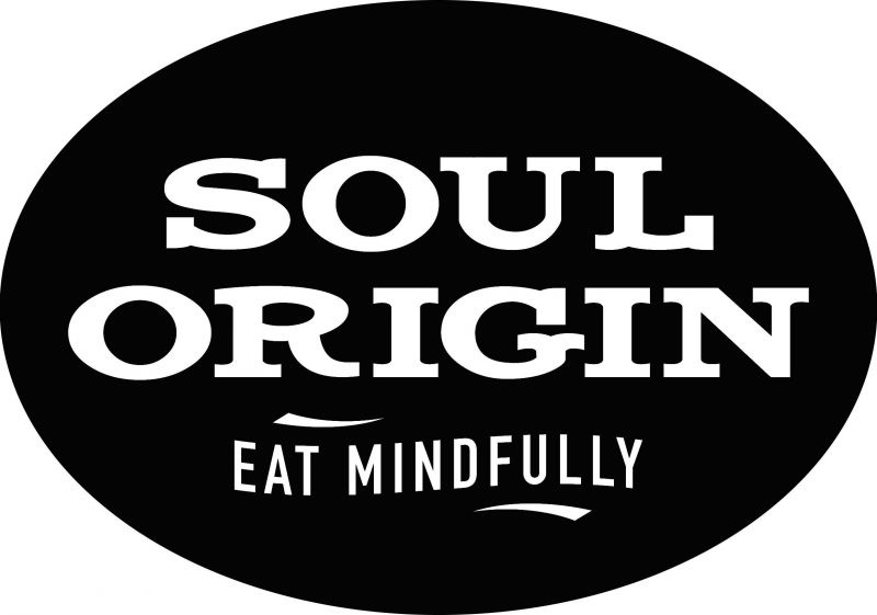 Soul Origin Franchise for Sale