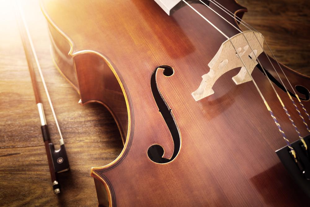 A saisir : commerce en ligne d'instruments et accessoires musicau