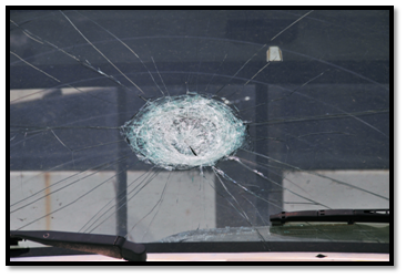 WINDSHIELD REPLACEMENT BUSINESS FOR SALE!