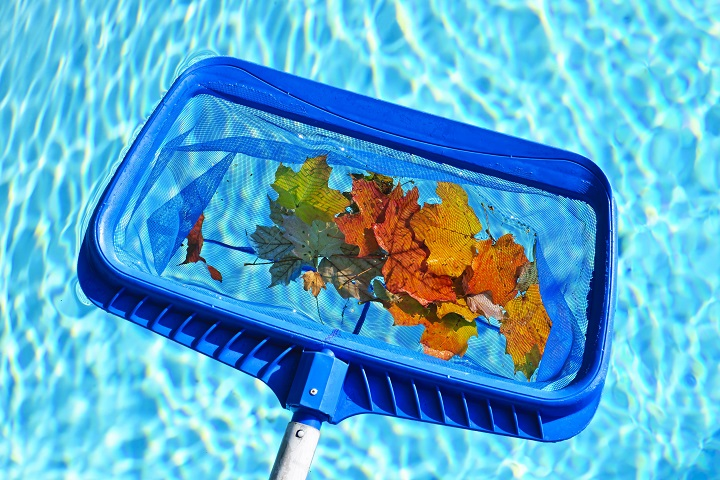 Long Established Pool Service and Equipment