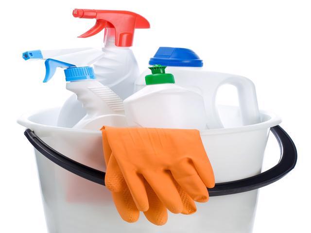 Maid Service Franchise Profitable Est 21 years