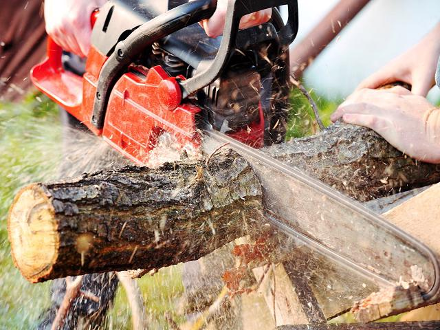 Profitable Arborist-Cash for the assets, seller note for business