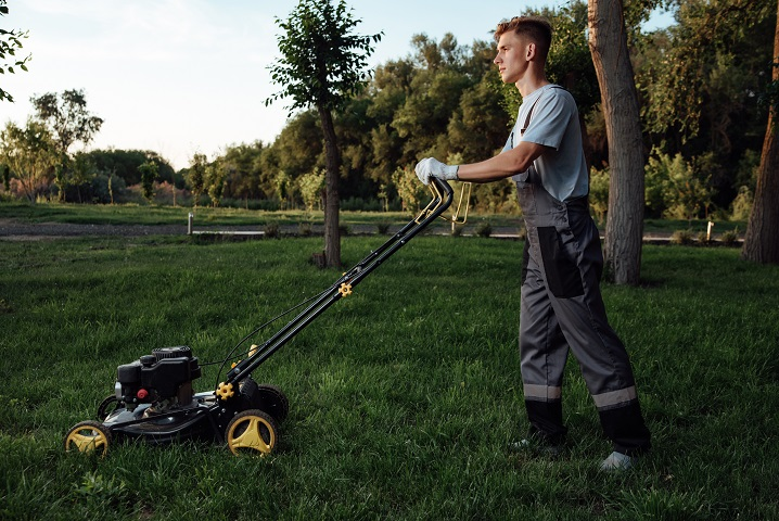 Smaller Lawn and Landscaping Business with Growth Potential