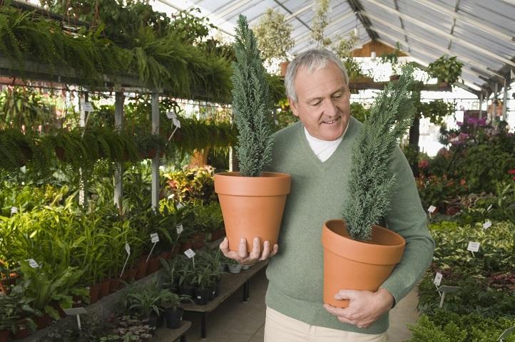 Florida Nursery & Landscape Business For Sale
