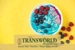 Frozen Yogurt Shop - Semi Absentee - Motivated Seller
