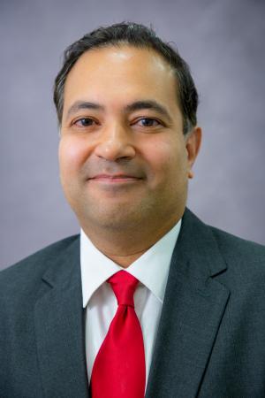Ron Mittra