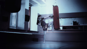 2 Locations Established Franchised Kickboxing Studios
