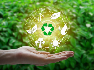 Energy Efficient and Sustainability Franchise