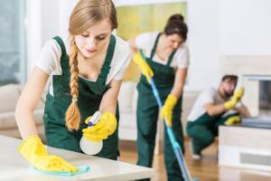 Turnkey & Profitable Cleaning Biz, Easy to Grow, Steady Clientele