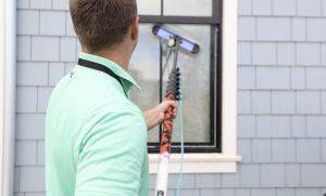 Profitable Worried Bird Window Cleaning and Exterior Detailing